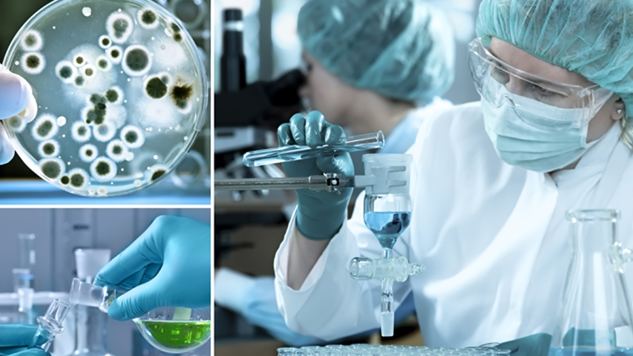 microbiology task 1 Page 4 course outline: mbt336 applied microbiology and biotechnology assessment task 3: laboratory portfolio goal: this assessment has been designed for you to specifically develop your competencies in the laboratory – which is an essential skill for.