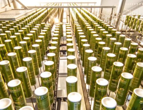 НаСтаврополье планируют открыть 2новых завода стоимостью 2,5млрд рублей