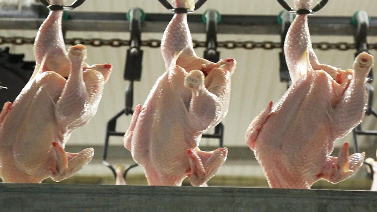 Группа «Ресурс» начала экспорт мяса птицы сиспользованием железной дороги