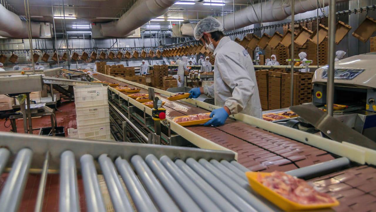Учёные РФполучили 300млн руб. насоздание безопасных пищевых производств