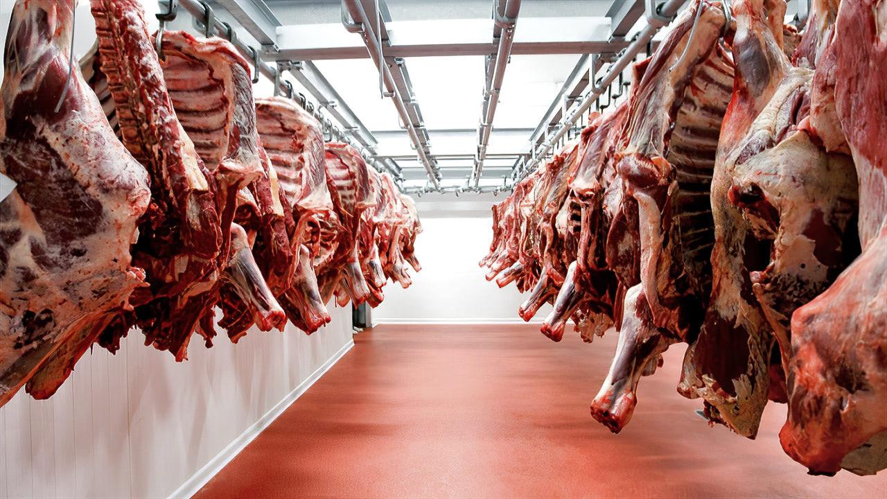 России нужно удвоить мясную отрасль